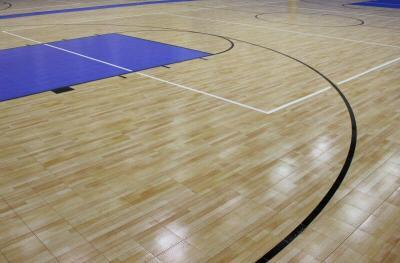 Gym Project Solutions Sport Court Gymnasium